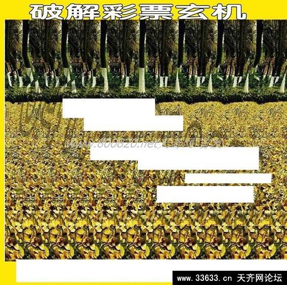 福彩3d好彩网