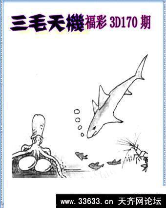 福彩三地三毛图库 2862福彩3d字谜查询,福彩三毛图库